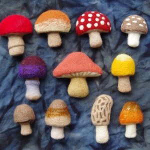 mushroom Forest Watcher